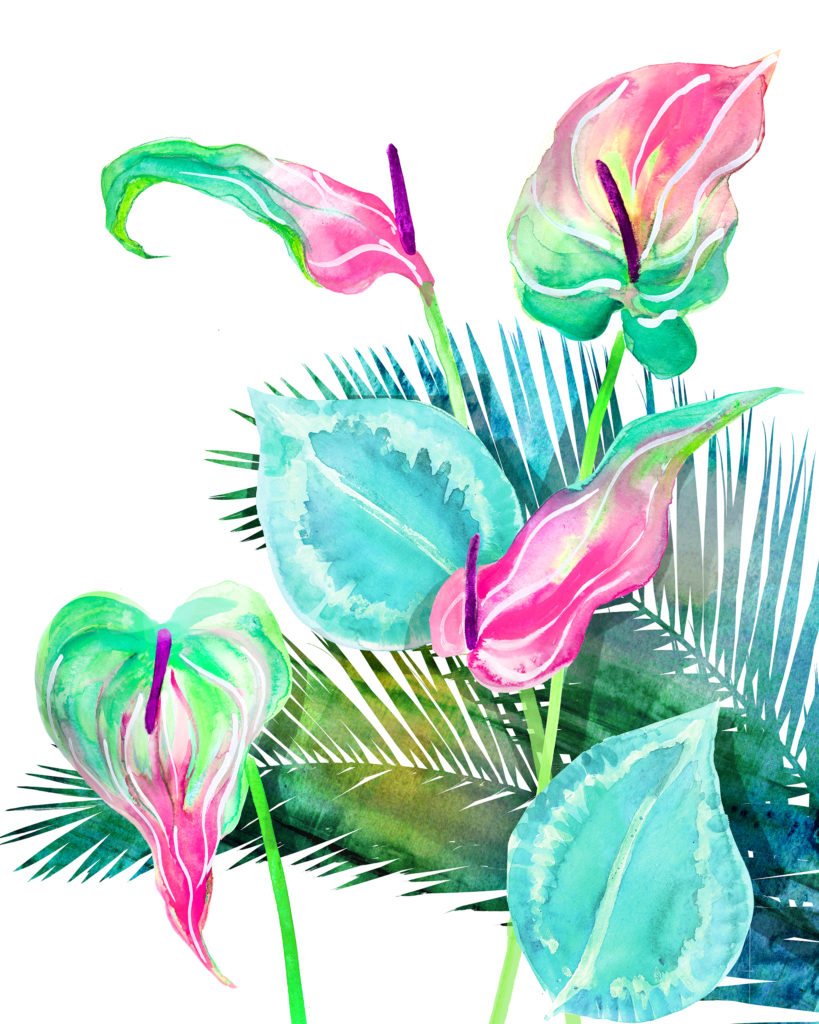 Botanical painting in watercolor by Crystal Smith - tropical flowers, anthuriums