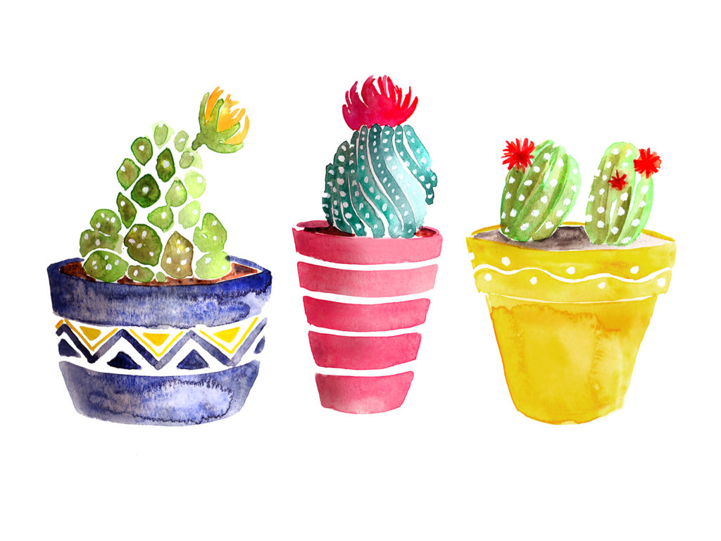 cacti in watercolor painting by Crystal Smith